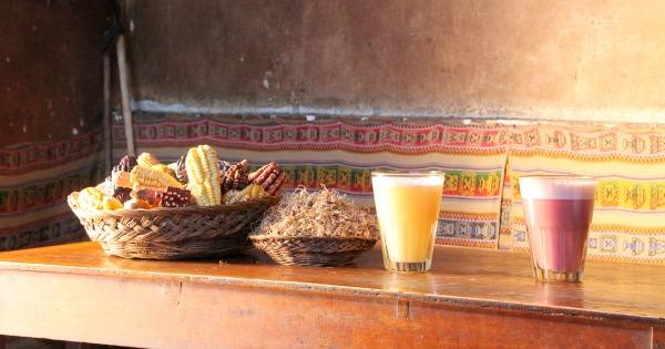 Chicha de Jora: Peru's Fermented Inca Beer